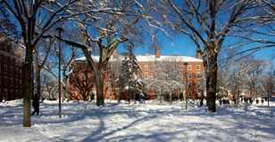 Harvard University Campus Dorm after a Snow Storm royalty free stock image
