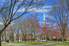 Harvard University Old Yard in the Spring Stock Image
