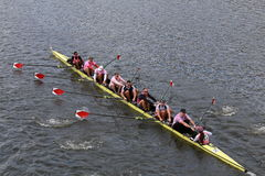 Harvard University races in the Head of Charles Regatta Royalty Free Stock Photo
