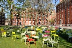 Harvard Yard. Colorful chairs and freshman dorms in Harvard Yard Royalty Free Stock Photos