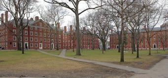 Harvard Yard in Cambridge Stock Photography