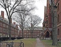 Harvard Yard in Cambridge Royalty Free Stock Image