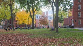 Harvard Yard Fall Day Royalty Free Stock Images