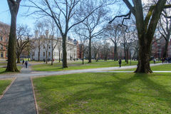 Harvard Yard in Spring Royalty Free Stock Photo