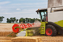 Harvest Royalty Free Stock Photography