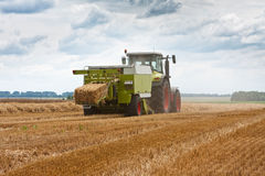 Harvest. Combine at work in field, harvest Stock Photo