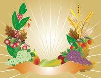 Free Harvest. Royalty Free Stock Image - 11032936