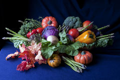 Harvest. Assortment of harvest vegetables with baskets and leaves Royalty Free Stock Image