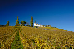 After the harvest. The Swiss wine-growing village of Fechy on a hilltop, amidst the autumn vineyards Royalty Free Stock Images