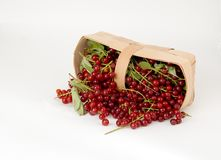 Harvest 2 Royalty Free Stock Images