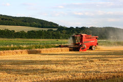 Harvest 2 Royalty Free Stock Photography
