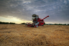 Harvest Stock Photography