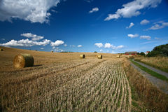 Harvest. Nature in south Sweden in the province of Sk�ne, fields after harvest royalty free stock photography