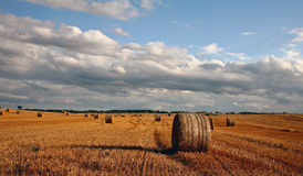 Harvest. Nature in south Sweden in the province of Sk�ne, fields after harvest stock photography