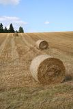 Harvest. Landscape Royalty Free Stock Image