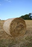Harvest. Landscape Royalty Free Stock Photography