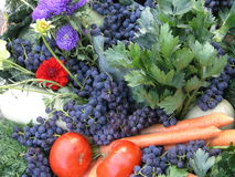 Harvest. Fruit and vegetables composition Royalty Free Stock Photo