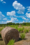 Harvest. Late summer in the easley, south carolina countryside sees large cumulonimbus cloudscapes, hay bales stock images