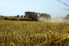 Harvest. Corn field with combineharvester in summer during harvest Royalty Free Stock Photos
