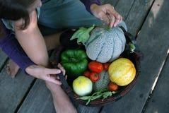 Harvest. Little girl looking at freshly picked vegetables in basket Stock Images