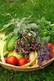 Harvest Royalty Free Stock Photo