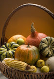 Harvest Stock Images