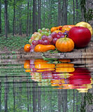 Harvest. Royalty Free Stock Photography