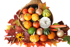 Harvest. Colorful vegetables autumn harvest isolated on white Royalty Free Stock Images