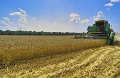 Harvest. Of wheat. Shipment, loading, Combine unloads grain in the lorry Royalty Free Stock Images