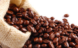 Harvest. Other images of coffee also available royalty free stock photo