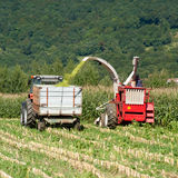 Harvest - Agricultural machinery harvests corn. On a field Royalty Free Stock Images
