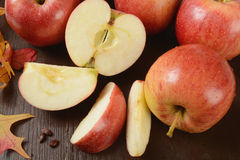 Harvest apples Royalty Free Stock Images
