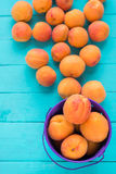 Harvest of apricots in small steel bucket. Apricot harvest in small steel bucket on a background of scattered apricots on table royalty free stock image