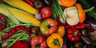 Harvest, Autumn. Panoramic collection of fresh healthy fruits and vegetables. Healthy eating background. Vegetables background royalty free stock image