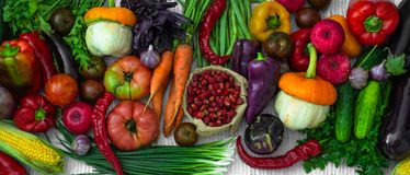 Harvest, Autumn. Panoramic collection of fresh healthy fruits and vegetables. Healthy eating. Copy space. Vegetables background royalty free stock images