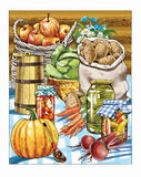 harvest   autumn   work   people pickles Royalty Free Stock Photography