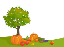 Harvest background. Illustration of an autumn harvest scene on a white background Stock Photos