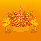 Harvest background Royalty Free Stock Photography
