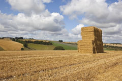 Harvest bale stack Stock Photos