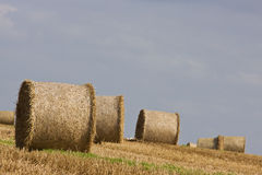 Harvest Bales on the Horizon. Hay bales dominate this North Devon landscape at harvest time, UK Royalty Free Stock Image