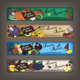 4 Harvest banners for advertising template. Fruits Royalty Free Stock Image