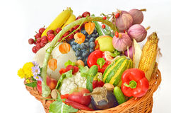 Harvest basket Royalty Free Stock Photography