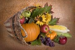Harvest basket Stock Image