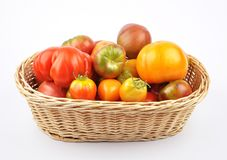 Free Harvest Basket With Tomatoes On White Background Stock Photography - 126077342