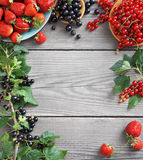 Harvest of  berries  on old wooden table. Copy space for your text. Royalty Free Stock Photography
