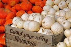 Harvest Blessings stock photo