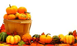 Harvest border Royalty Free Stock Images