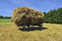Harvest car Stock Photography