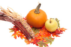 The Harvest Centerpiece Royalty Free Stock Photo