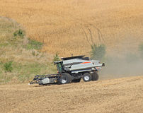 Harvest Closeup. Combining beans at harvest time stock photo